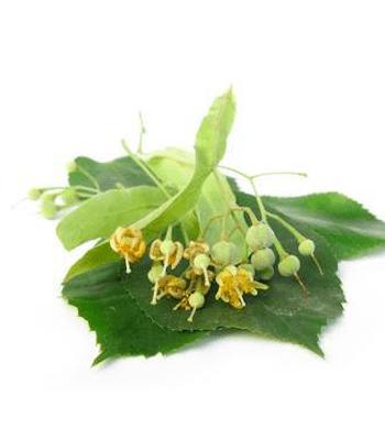 Lindenblüten BIO
